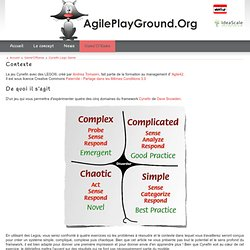 Cynefin Lego Game - Agile Play Ground