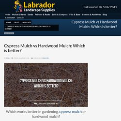 Cypress Mulch vs Hardwood Mulch: Which is Better?