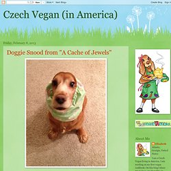 Czech Vegan (in America)