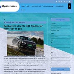 Däckalternativ för ditt fordon för vintersäsongen - Blue Berry Cars