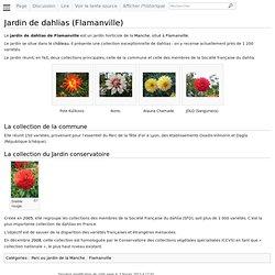 Jardin de dahlias (Flamanville) - Wikimanche