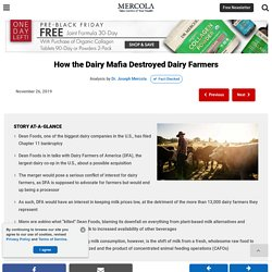 How the Dairy Mafia Destroyed Dairy Farmers
