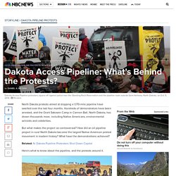 Dakota Access Pipeline: What's Behind the Protests?