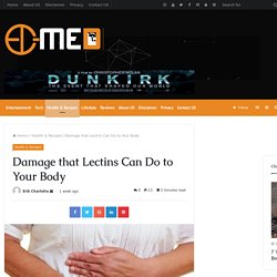 Damage that Lectins Can Do to Your Body