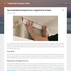 Tips to Help Repair Damaged Cornice- Suggestions by an Expert
