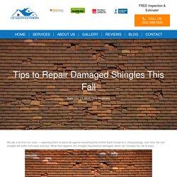 Tips to Repair Damaged Shingles This Fall - 730 South Exteriors