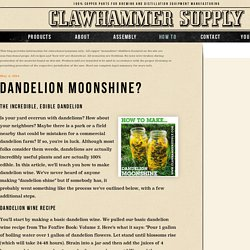 Dandelion Moonshine? – Copper Moonshine Still Kits - Clawhammer Supply