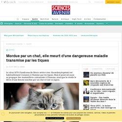 Mordue par un chat, elle meurt d'une dangereuse maladie transmise par les tiques - Sciencesetavenir.fr
