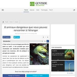 Dossier : 8 animaux dangereux que vous pouvez rencontrer à l'étranger