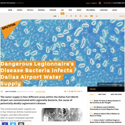 Dangerous Legionnaire's Disease Bacteria Infects Dallas Airport Water Supply