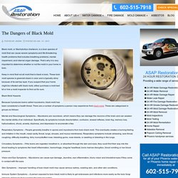 What are the dangers of black mold
