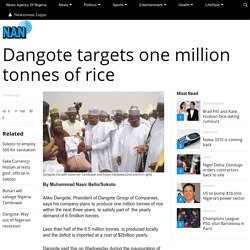 Dangote targets one million tonnes of rice - News Agency of Nigeria (NAN)