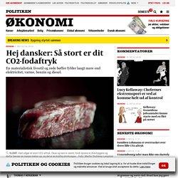 Hej dansker: Så stort er dit CO2-fodaftryk