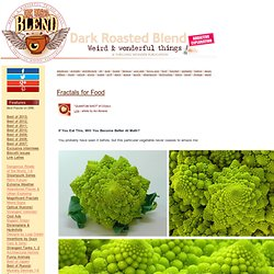 Fractals for Food