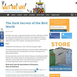 The Dark Secrets of the Bird World