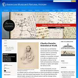 Darwin Manuscripts Project