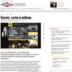 Darwin, ruche à millions