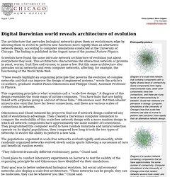 Digital Darwinian world reveals architecture of evolution