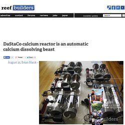 DaStaCo calcium reactor is an automatic calcium dissolving beast