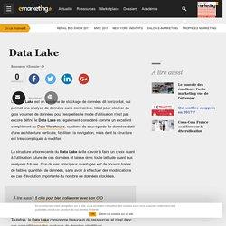 Data Lake - Définition du glossaire