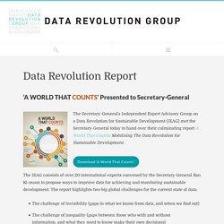 Data Revolution Report - Data Revolution Group