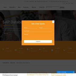 SAP Database Users Email List