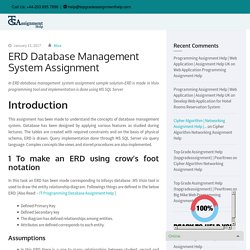 ERD Database Management System