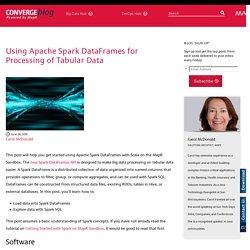 Using Apache Spark DataFrames for Processing of Tabular Data