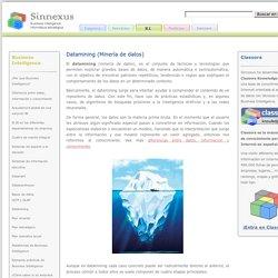 Datamining (Minería de datos)