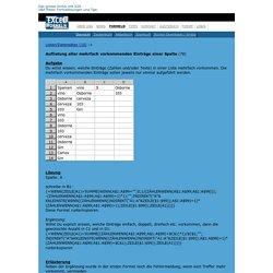 Listen/Datensätze (10) - Auflistung aller mehrfach vorkommenden Einträge einer Spalte