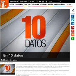 En 10 datos: los cactus - culturizando.com