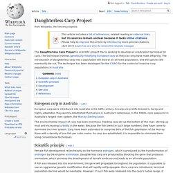 Daughterless Carp Project
