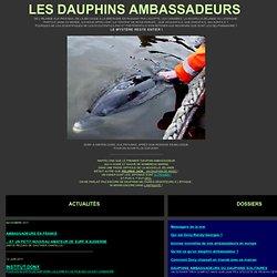 Dauphin ambassadeur dony