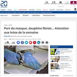 Port du masque, dauphins filmés… Attention aux intox de la semaine