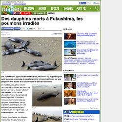 Des dauphins morts à Fukushima, les poumons irradiés