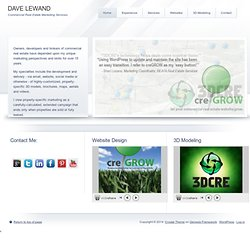 DAVE LEWAND Marketing Services