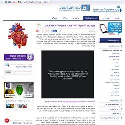 מערכת ההפעלה וההולכה החשמלית של הלב