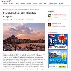 1-Day Tokyo DisneySea Itinerary