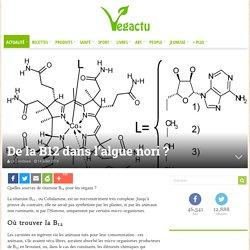 De la B12 dans l'algue nori ?