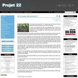 gestion de l'imaginaire (forêts)