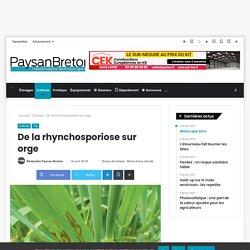 PAYSAN BRETON 16/04/18 De la rhynchosporiose sur orge