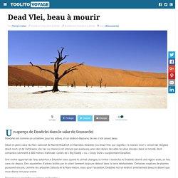 Dead Vlei, beau à mourir