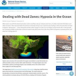 Dealing with Dead Zones: Hypoxia in the Ocean