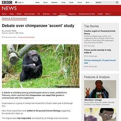 Debate over chimpanzee 'accent' study