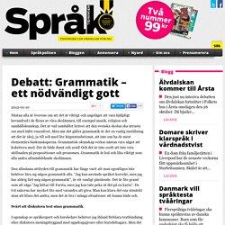 Debatt: Grammatik – ett nödvändigt gott