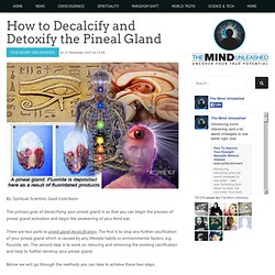 How to Decalcify and Detoxify the Pineal Gland