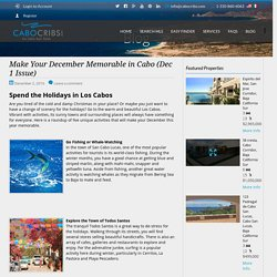 Make Your December Memorable in Cabo (Dec 1 Issue) - CaboCribs.com Real Estate