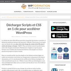 Décharger Scripts et CSS en 1 clic pour accélérer WordPress