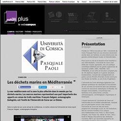 Les déchets marins en Méditerranée / CORSE PASQUALE PAOLI