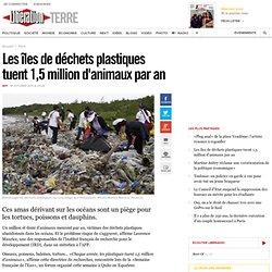 Les îles de déchets plastiques tuent 1,5 million d'animaux par an